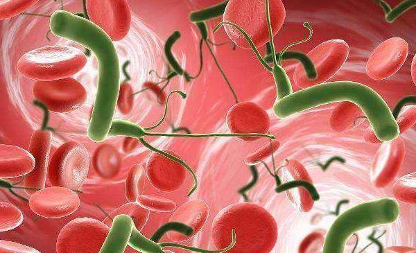 幽门螺杆菌怕酸奶 幽门螺杆菌怕酸奶,抗菌素也并不是万能的 相关健康资讯