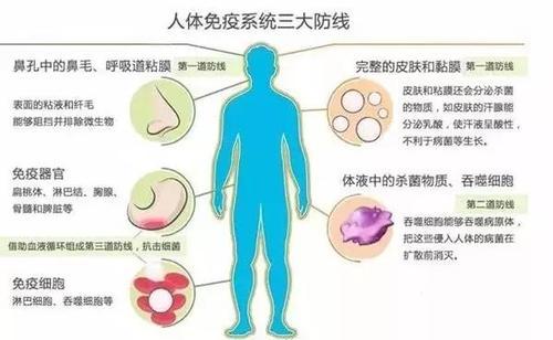 关于扁桃体癌早期,你知道多少? 关于扁桃体癌早期,你知道多少? 扁桃体相关问题