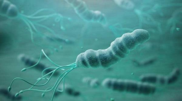 幽门螺杆菌感染会自愈吗 幽门螺杆菌感染会自愈吗?介绍幽门螺杆菌感染的几个疗法! 胃肠道相关好文