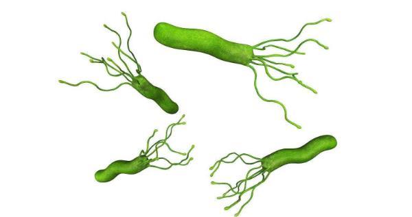 幽门杆菌最佳治疗方案g 幽门杆菌最佳治疗方案,别走弯路,一次消除! 胃肠道相关好文