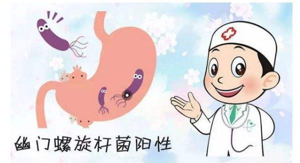 幽门螺杆菌医生说不用治 幽门螺杆菌医生说不用治,看完恍然大悟! 胃肠道相关好文