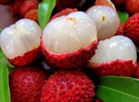 扁桃体发炎忌口什么水果你知道吗? 扁桃体发炎忌口什么水果你知道吗? 扁桃体相关问题