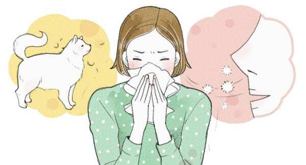 鼻炎根治 鼻炎根治,哪种鼻炎可以根治? 耳鼻喉健康栏目