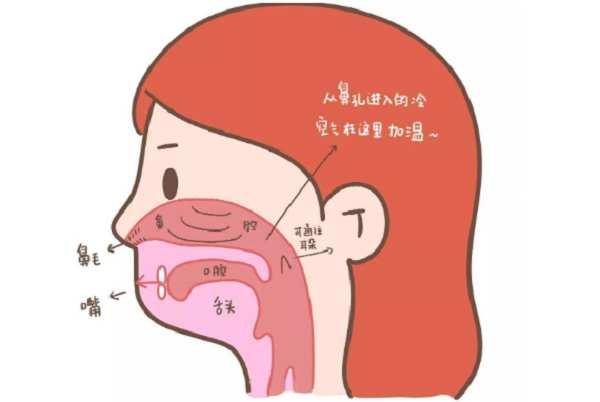 怎么判断是否鼻炎 怎么判断是否鼻炎,主要看这两种情况! 耳鼻喉健康栏目