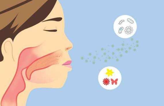 过敏性鼻炎如何根治 过敏性鼻炎如何根治,看这些就够了! 耳鼻喉健康栏目