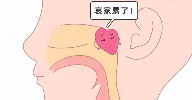 娃腺样体肥大只能手术?没这4种情况<strong>腺样体肥大</strong>,可以保守治疗 娃腺样体肥大只能手术?没这4种情况,可以保守治疗 腺样体肥大专题