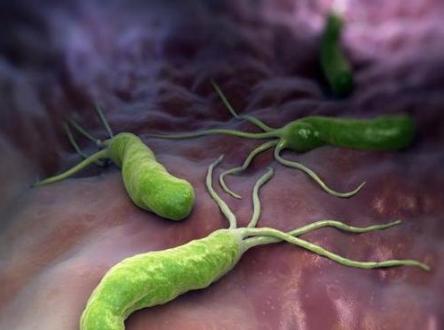 QQ截图20210422144325.png 幽门杆菌最害怕的东西,你了解吗? 胃肠道相关好文