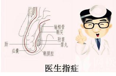 QQ截图20210427113904.png 90%的人都不了解鞘膜积液的病因! 泌尿系健康栏目