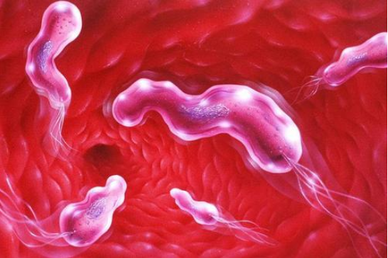 萎缩性胃炎的最佳治疗方法,胃病患者需要好好了解一下了